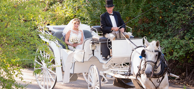 bride riding in back of horse drawn carriage